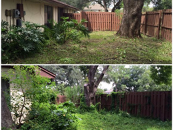 Yard mowing company in Ocoee, FL, 32776