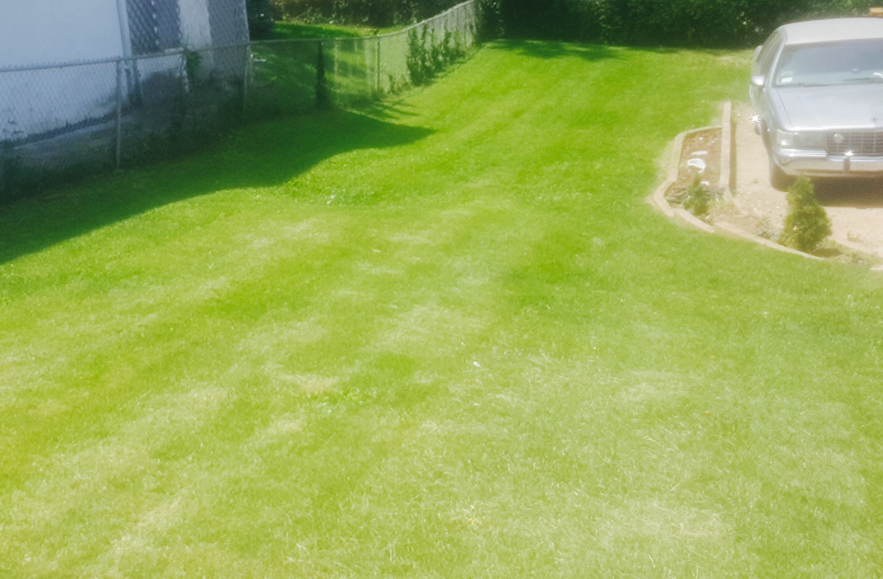 Yard mowing company in St Louis, MO, 63121