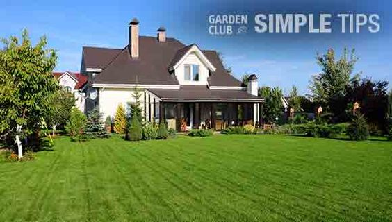 Yard mowing company in Smyrna , TN, 37167