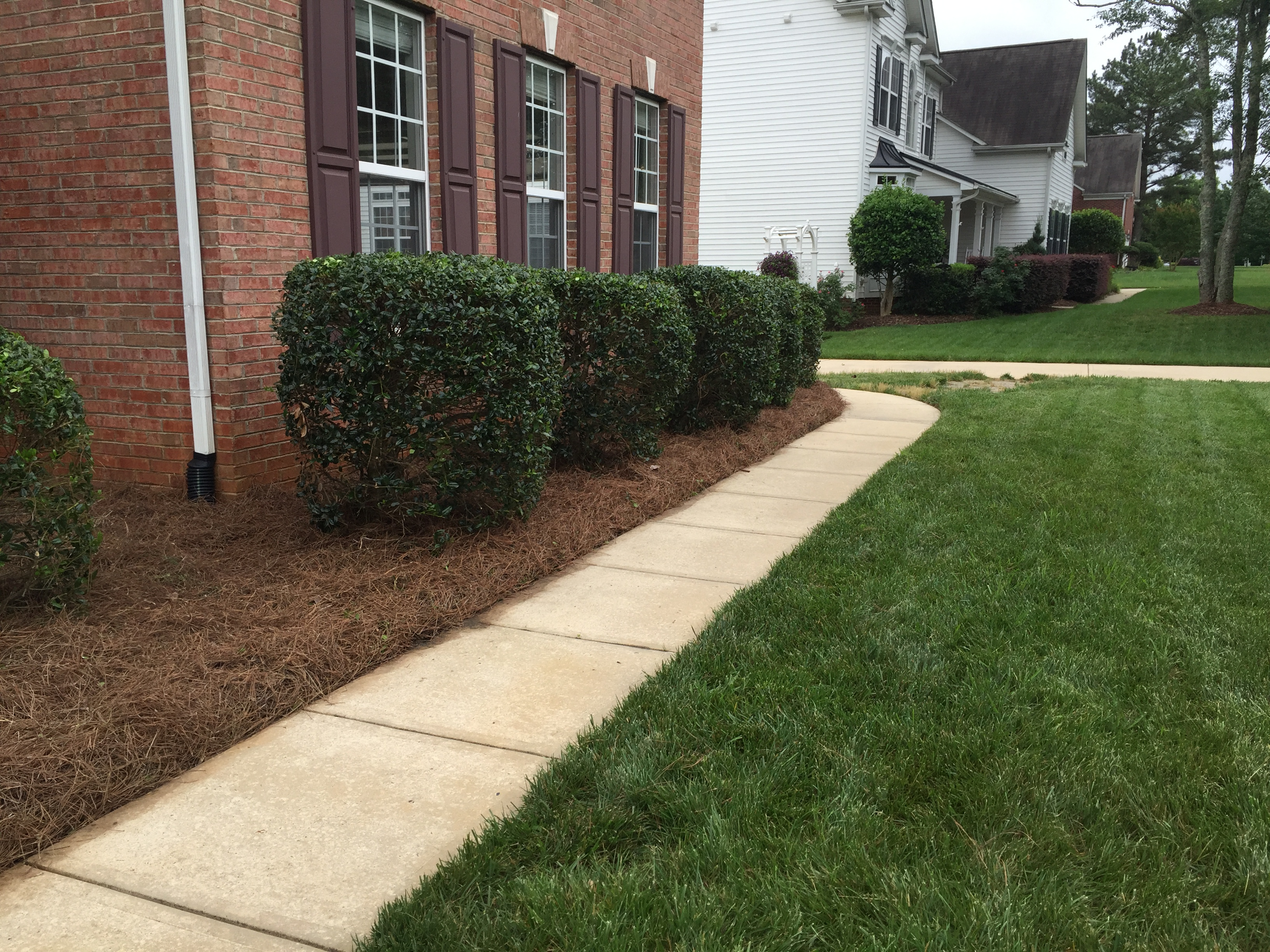 Yard mowing company in Charlotte, NC, 28205