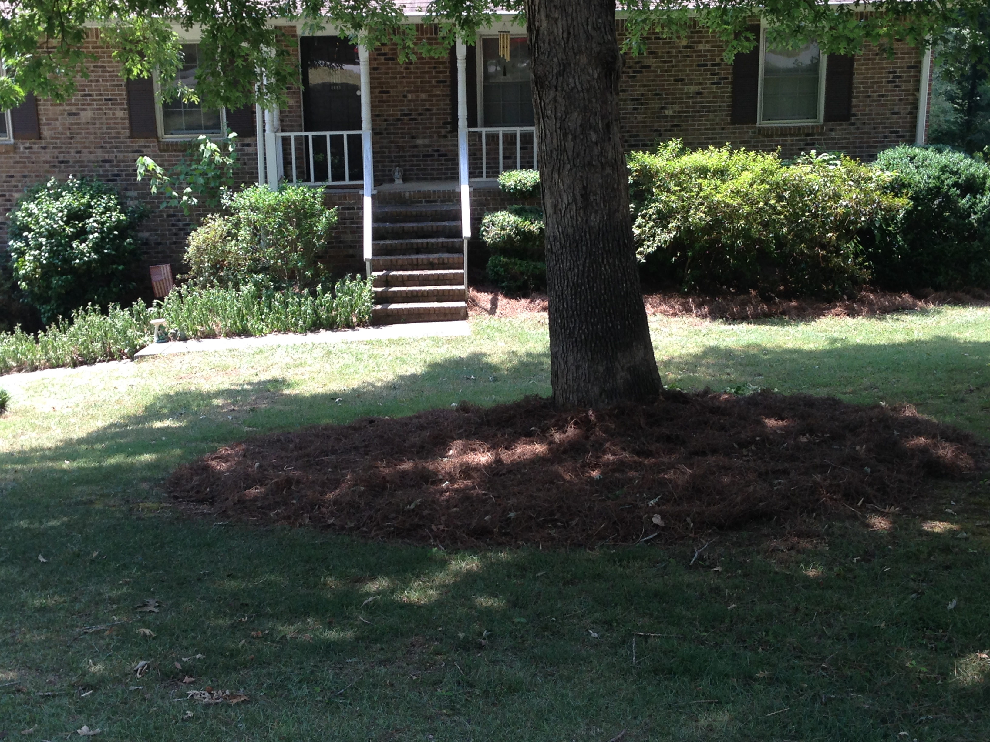 Yard mowing company in Jefferson, GA, 30549