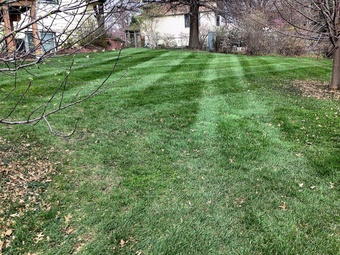 Yard mowing company in St. Charles, MO, 63304