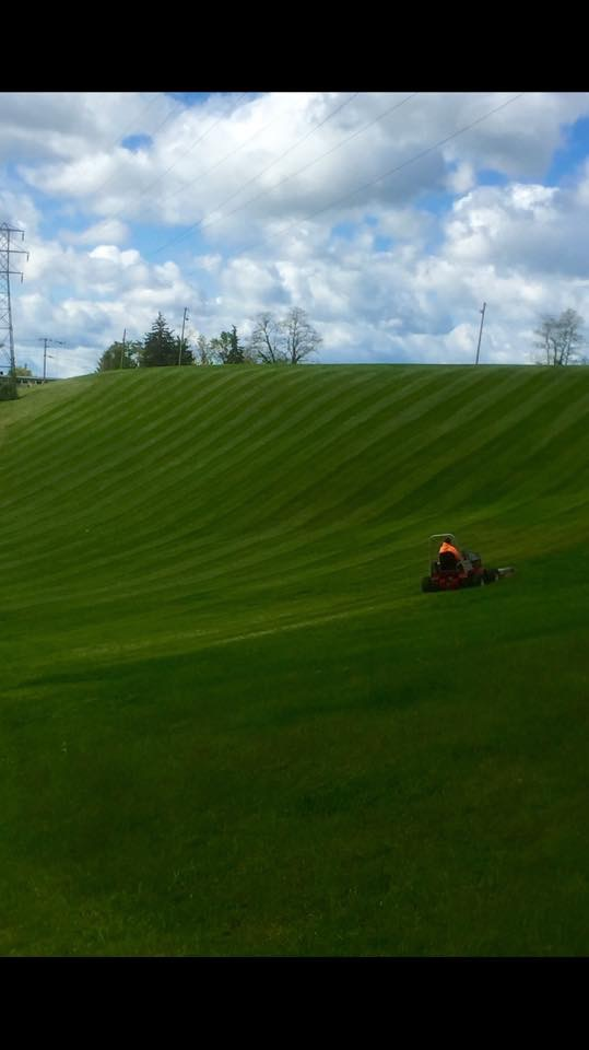 Yard mowing company in Chaplin, CT, 06235