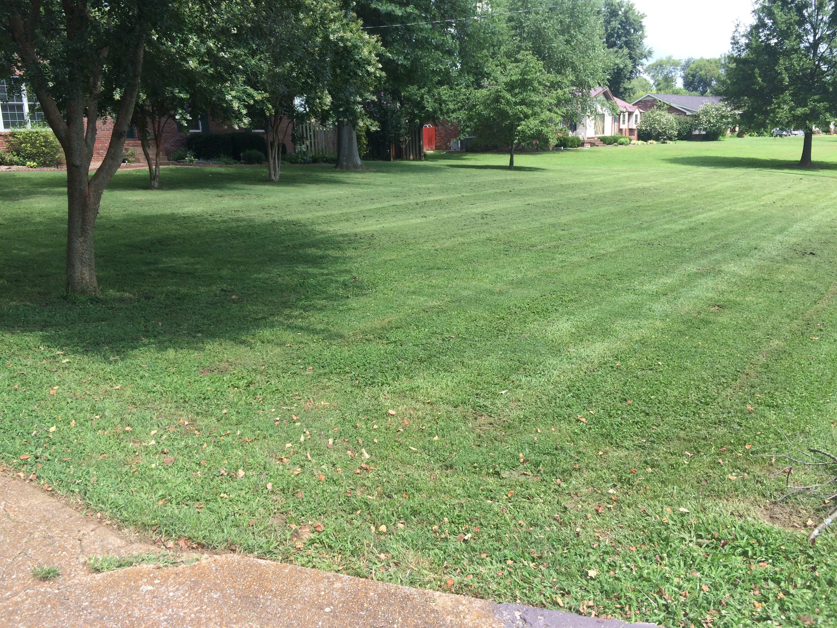 Yard mowing company in Nashville, TN, 37207