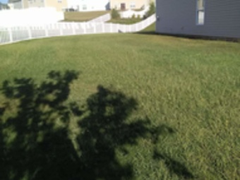 Yard mowing company in Mount Holly, NC, 28120