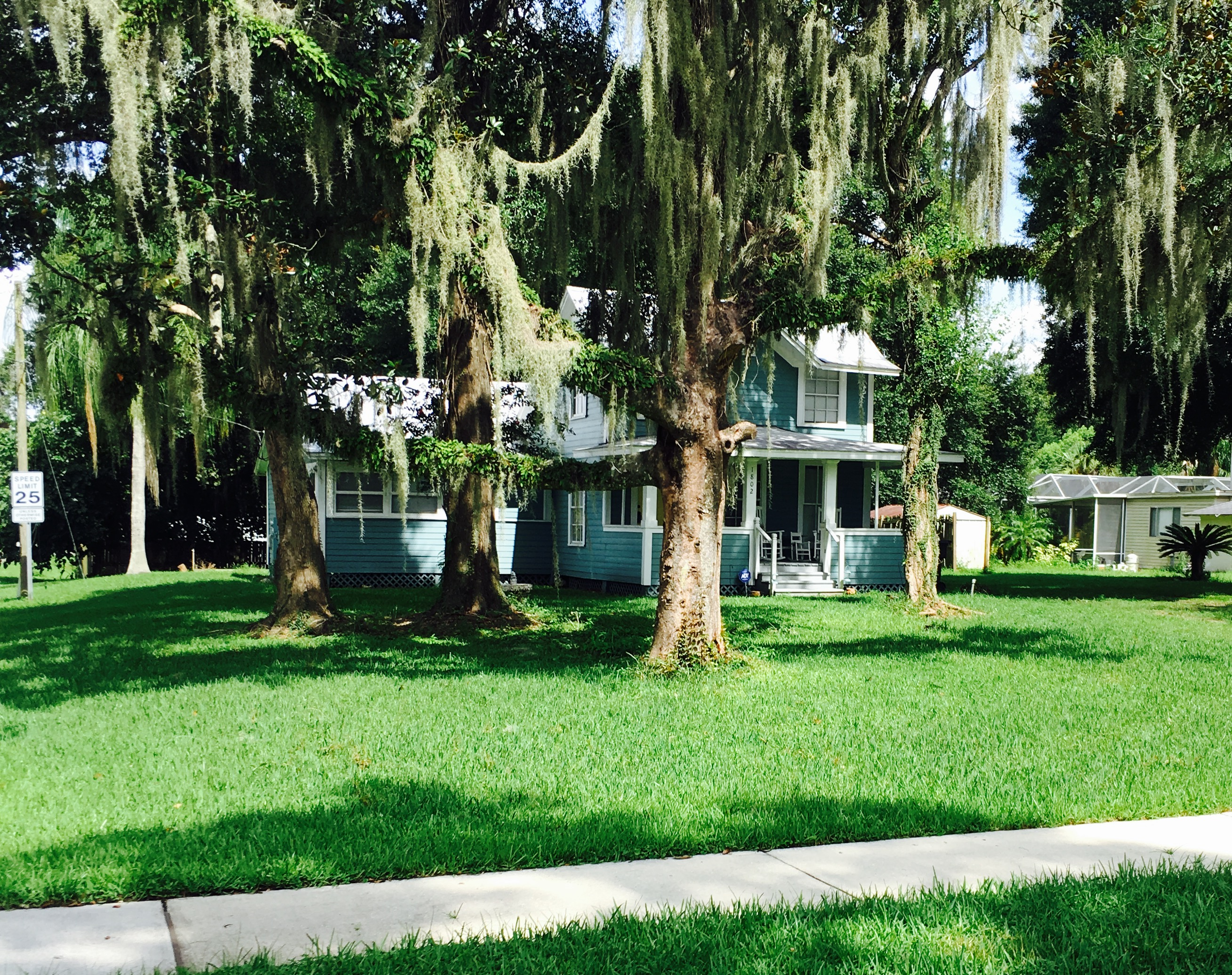 Yard mowing company in Brandon , FL, 33511
