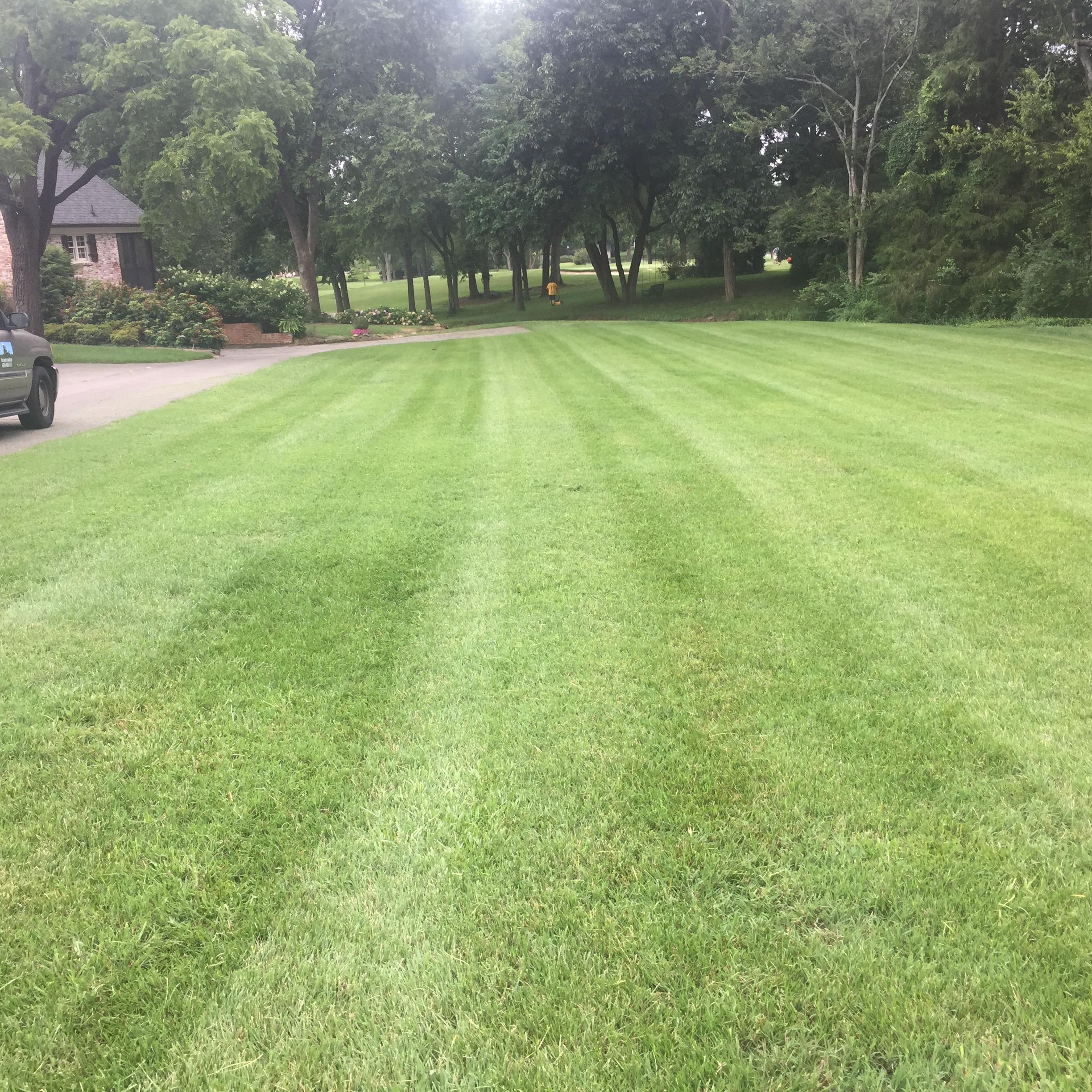 Yard mowing company in Nashville, TN, 37205