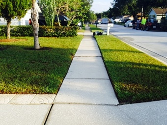 Yard mowing company in Lutz, FL, 33559