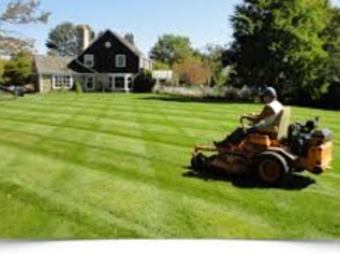 Yard mowing company in St Louis , MO, 63128