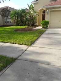 Yard mowing company in Plant City, FL, 33566