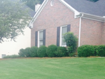 Yard mowing company in Nashville, TN, 37214