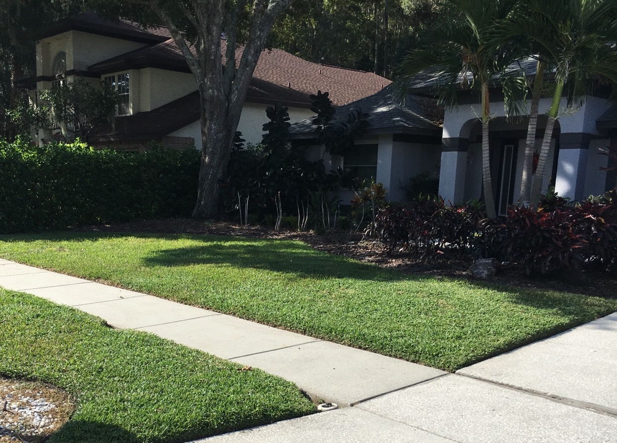 Yard mowing company in Riverview , FL, 33569