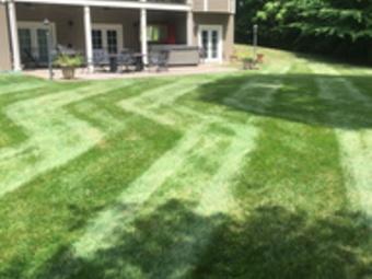 Yard mowing company in Sophia, NC, 27350