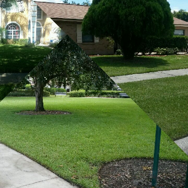 Yard mowing company in Orlando, FL, 32808