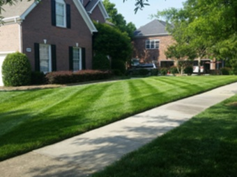 Yard mowing company in Charlotte, NC, 28269