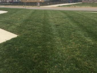 Yard mowing company in Murfreesboro , TN, 37130