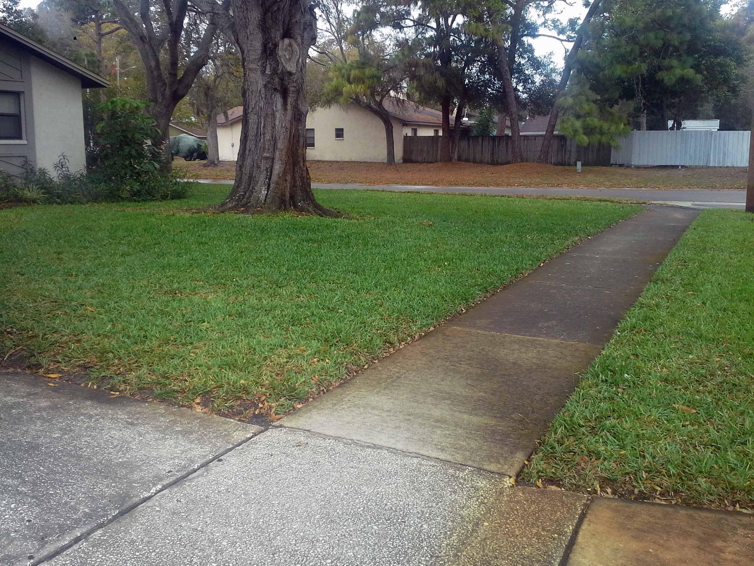 Yard mowing company in Largo, FL, 33773
