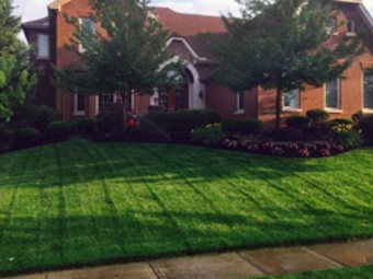 Yard mowing company in Houston, TX, 77545