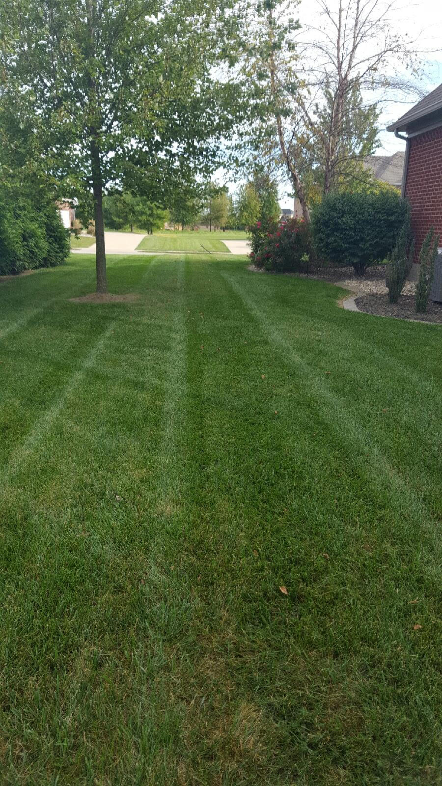 Yard mowing company in Belleville, IL, 62220