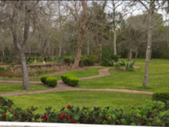 Yard mowing company in Houston, TX, 77033