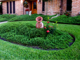 Yard mowing company in Richmond, TX, 77406