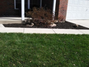 Yard mowing company in St Louis, MO, 63114