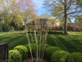 Yard mowing company in Fairview, TN, 37062