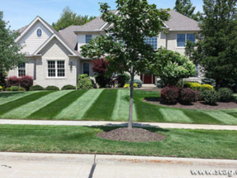 Yard mowing company in Charlotte, NC, 28262