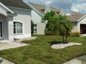 Yard mowing company in New Port Richey, FL, 34653