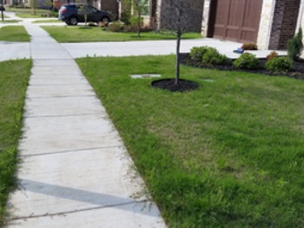 Yard mowing company in Irving, TX, 75063
