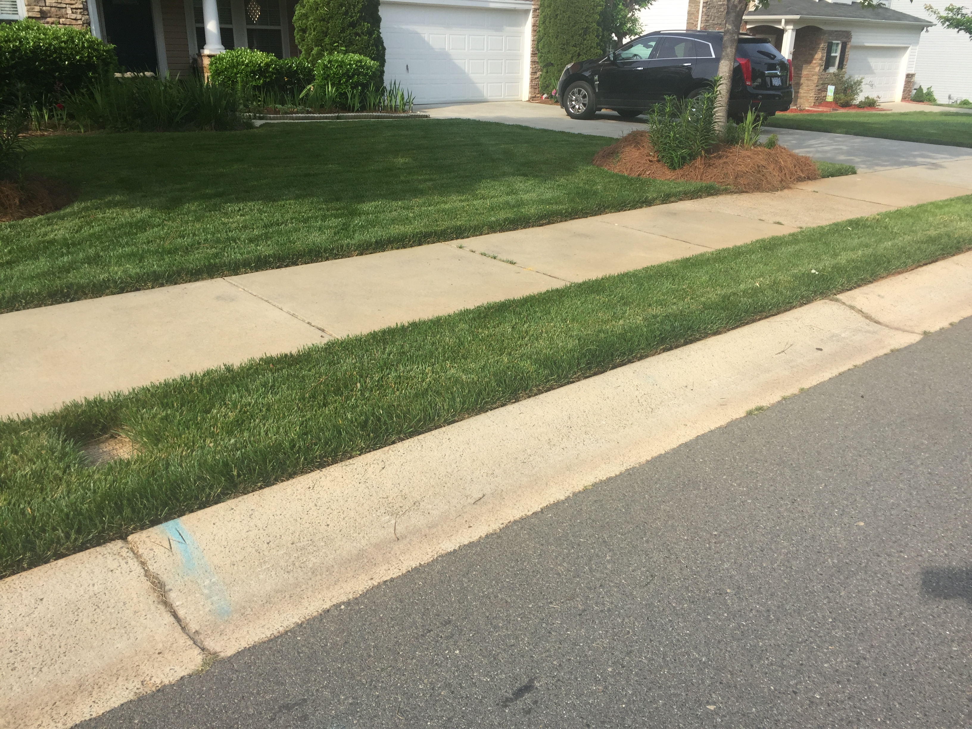 Yard mowing company in Minthill , NC, 28215