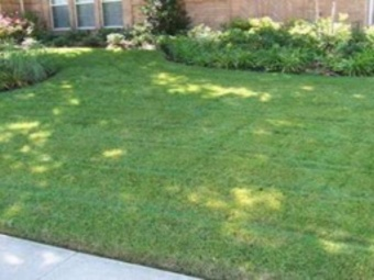 Yard mowing company in Mesquite, TX, 75150