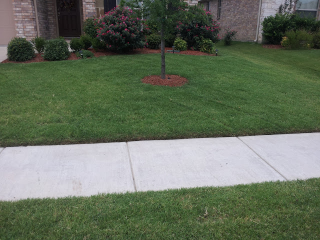 Yard mowing company in Irving, TX, 75060