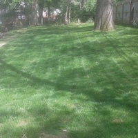 Yard mowing company in Affton, MO, 63123