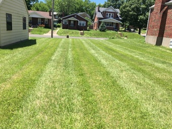 Yard mowing company in Saint Louis, MO, 63136