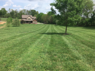 Yard mowing company in Clarksville, TN, 37040