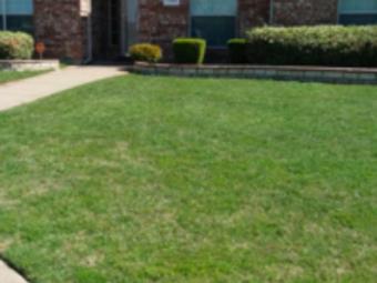 Yard mowing company in Dallas , TX, 75051