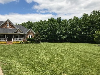 Yard mowing company in Clarksville , TN, 37042