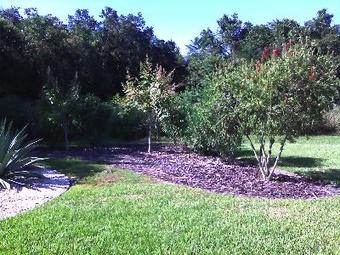 Yard mowing company in Wesley Chapel, FL, 33545
