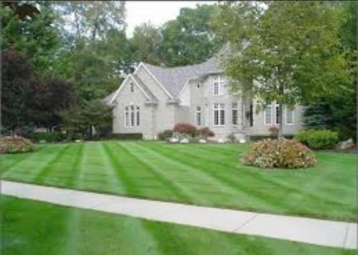 Yard mowing company in Tampa, FL, 33626