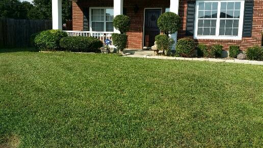 Yard mowing company in San Antonio, TX, 78227