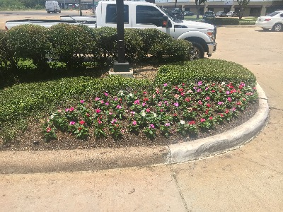 Yard mowing company in Houston, TX, 77053