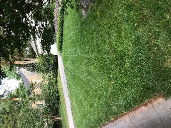 Yard mowing company in Huntersville, NC, 28078