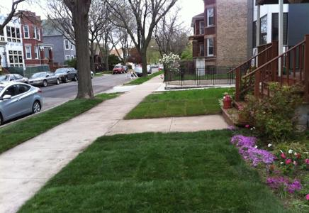 Yard mowing company in Chicago , IL, 60619