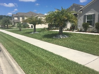 Yard mowing company in Deltona, FL, 32725