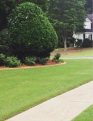 Yard mowing company in Brookhaven, GA, 30319
