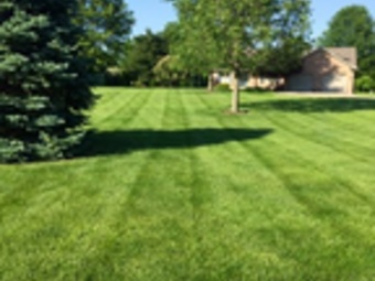 Yard mowing company in O'fallon, IL, 62269