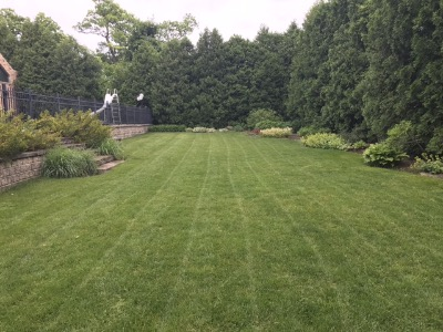 Yard mowing company in Gurnee, IL, 60031