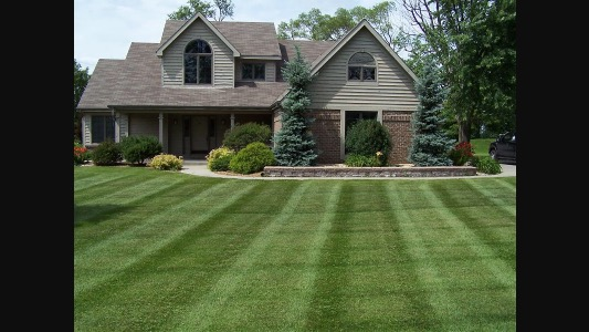 Yard mowing company in Portland, TN, 37148