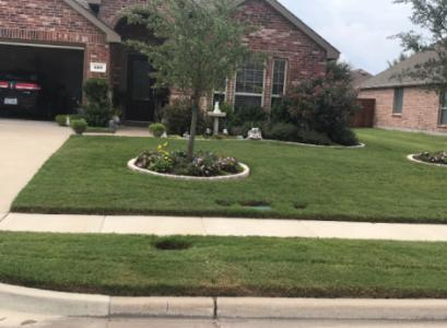 Yard mowing company in Forney , TX, 75126
